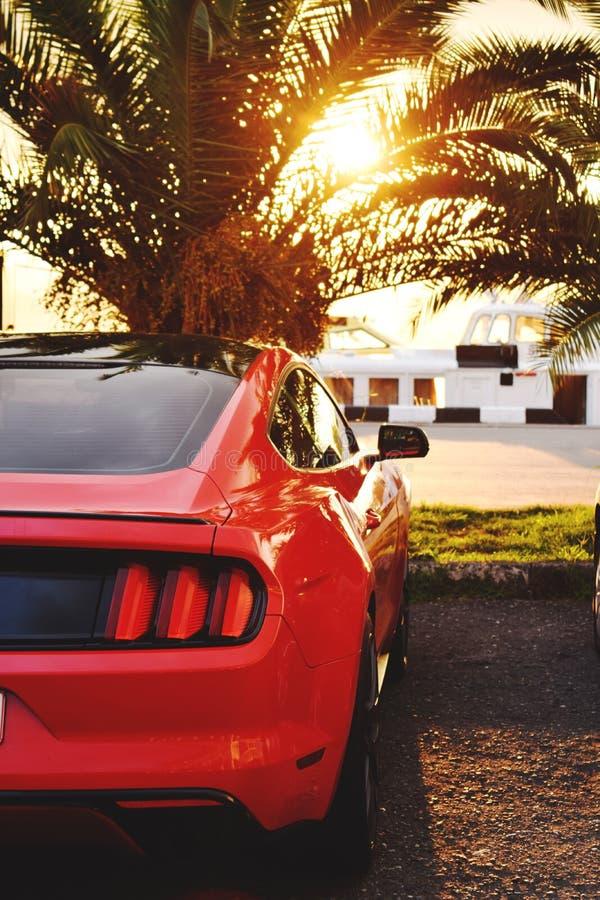 Το κόκκινο φωτεινό αυτοκίνητο μάστανγκ στοκ εικόνες