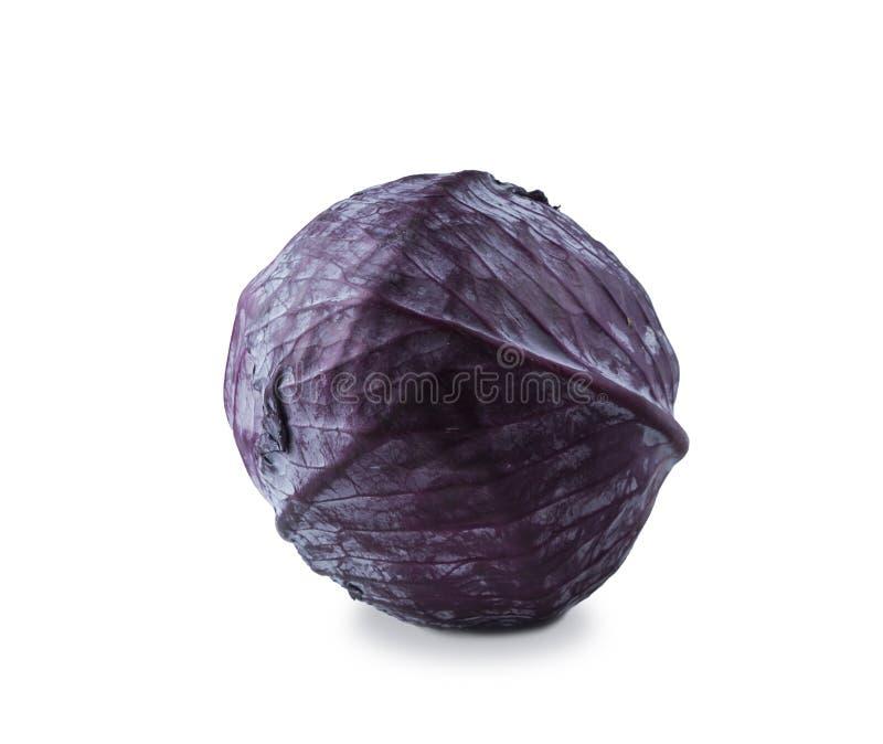 το λάχανο ανασκόπησης απ&omicr το λάχανο απομόνωσε το κό&kap στοκ εικόνες