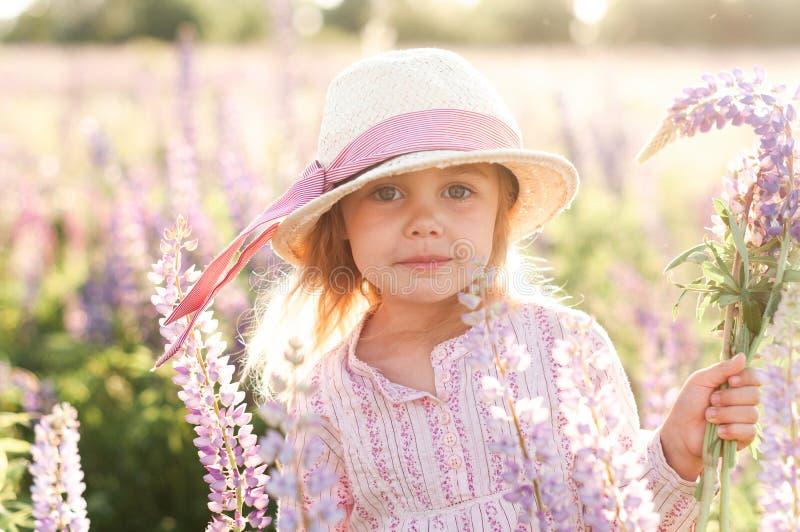 Το λατρευτό μικρό κορίτσι σε ένα καπέλο αχύρου συλλέγει μια ανθοδέσμη των λούπινων, στοκ φωτογραφία με δικαίωμα ελεύθερης χρήσης
