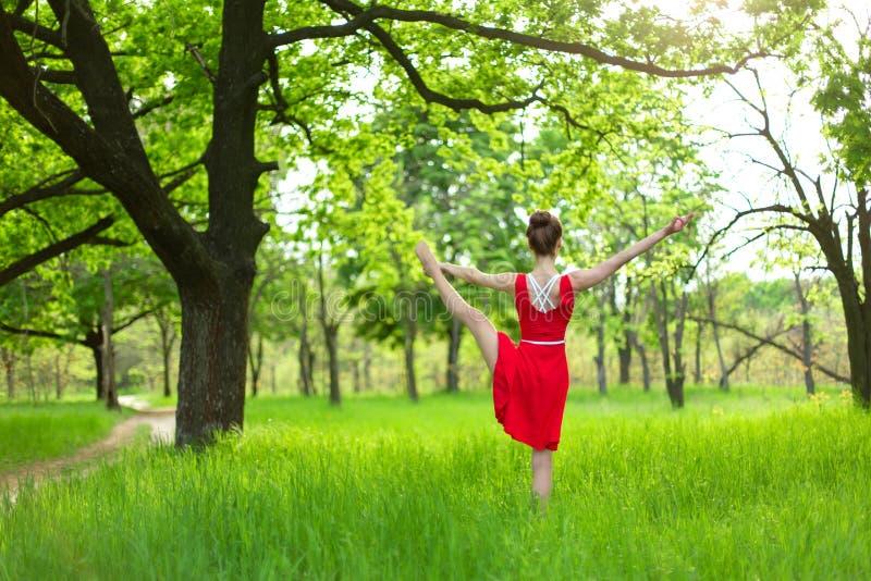 Το λεπτό όμορφο κορίτσι brunette σε ένα κόκκινο φόρεμα εκτελεί τη γιόγκα θέτει σε ένα θερινό πάρκο Πράσινο δάσος στο ηλιοβασίλεμα στοκ φωτογραφία με δικαίωμα ελεύθερης χρήσης