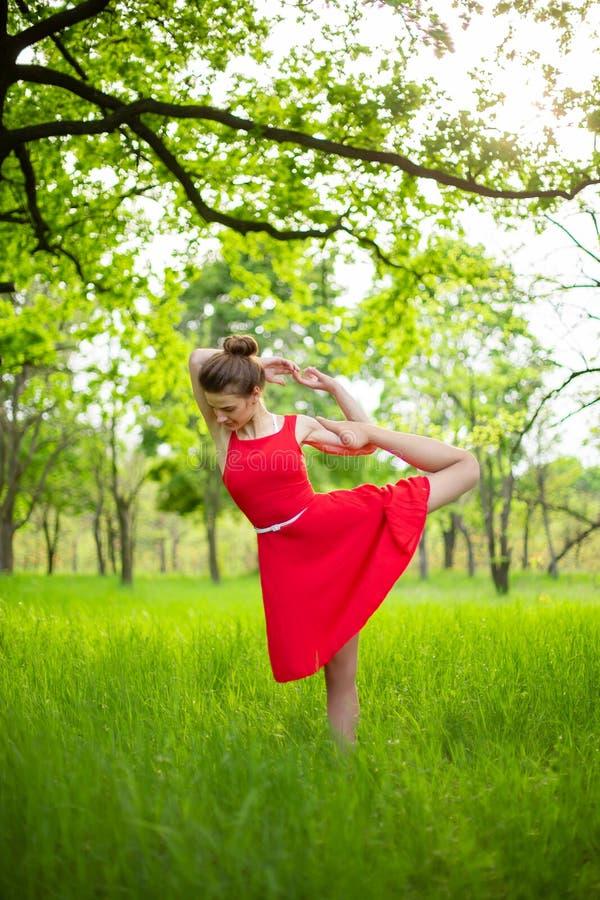 Το λεπτό όμορφο κορίτσι brunette σε ένα κόκκινο φόρεμα εκτελεί τη γιόγκα θέτει σε ένα θερινό πάρκο Πράσινο δάσος στο ηλιοβασίλεμα στοκ εικόνες