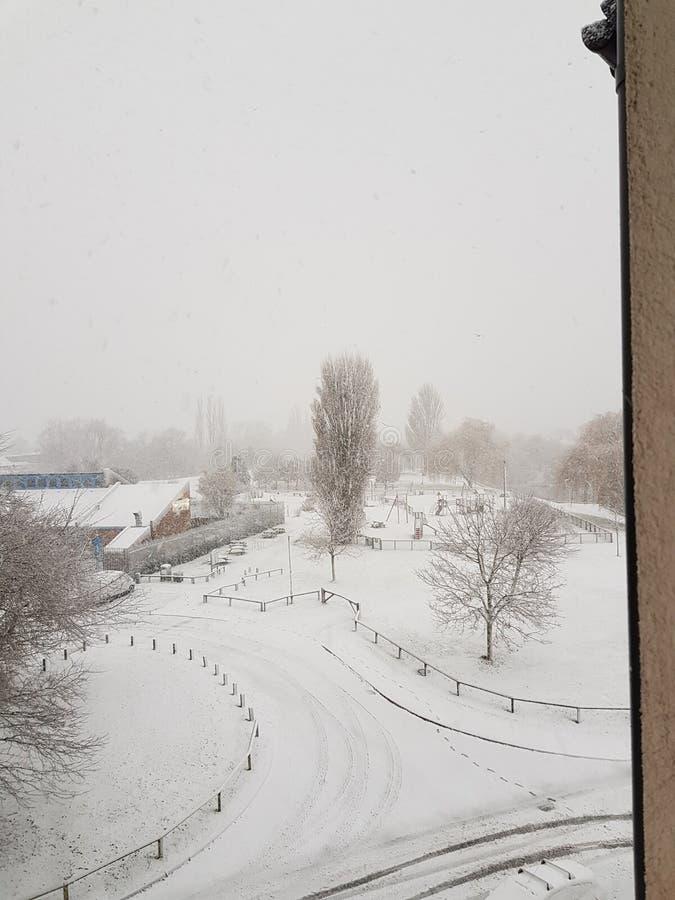 Το λευκό είναι το νέο πράσινο στοκ φωτογραφίες με δικαίωμα ελεύθερης χρήσης