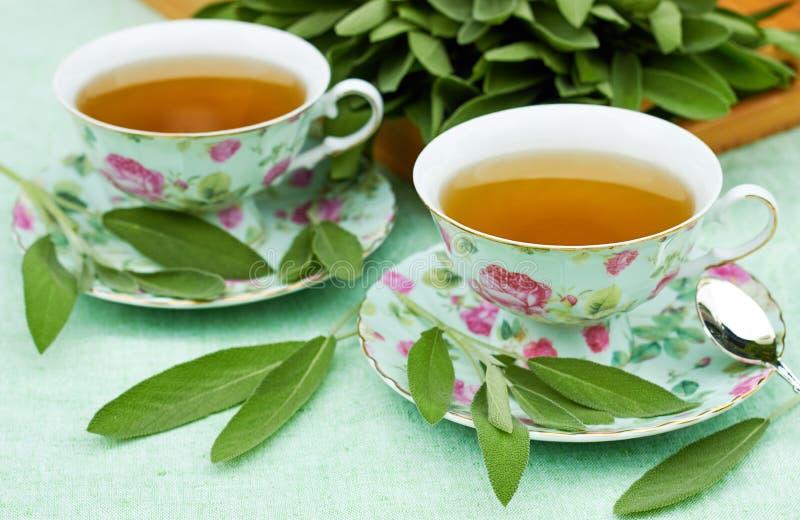 Το λογικό βοτανικό τσάι εξυπηρέτησε στα φλυτζάνια πορσελάνης στο υπόβαθρο υφάσματος μεντών με τη δέσμη των χορταριών στοκ εικόνες με δικαίωμα ελεύθερης χρήσης