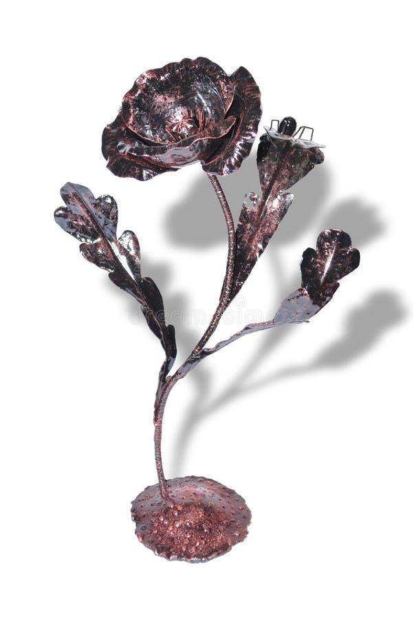 το λουλούδι που σφυρη&la στοκ εικόνα