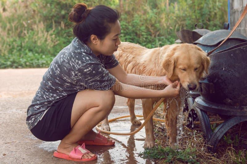 Το λούσιμο γυναικών χαλαρώνει χρυσό retriever σκυλιών υπαίθριο στοκ φωτογραφία