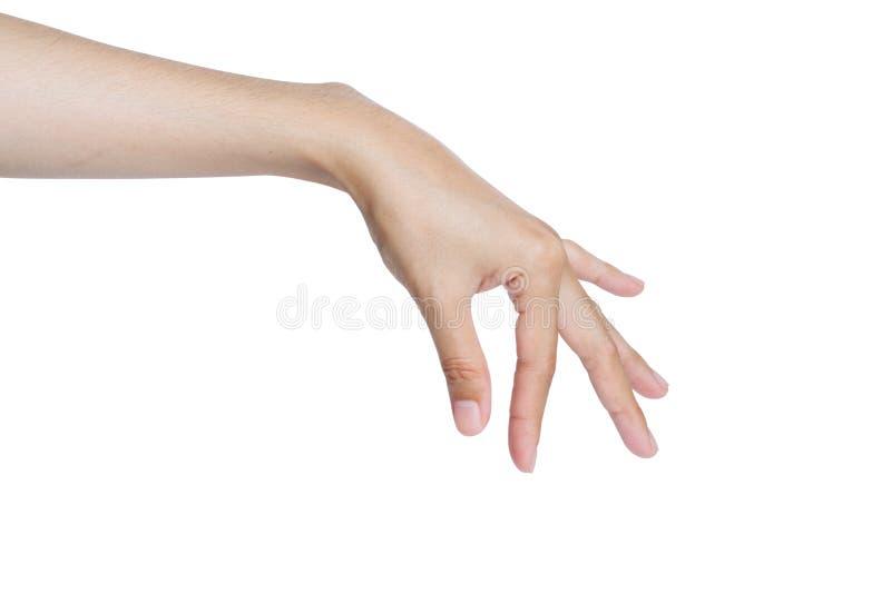Το μάζεμα με το χέρι απομόνωσε το λευκό στοκ εικόνα