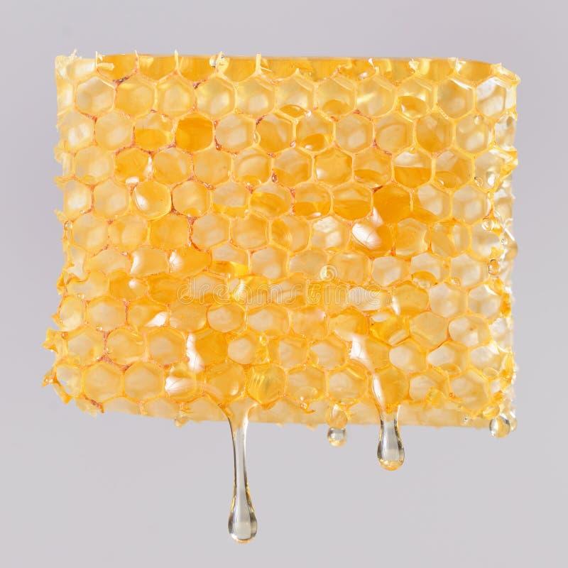 Το μέλι που στάζει στις κηρήθρες, κλείνει επάνω στοκ εικόνες