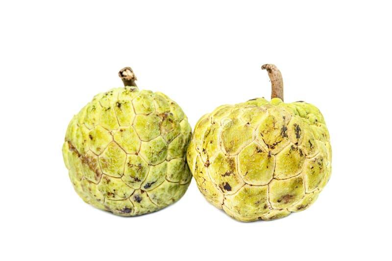 Το μήλο κρέμας δύο (ζάχαρη-Apple, Annona, sweetsop) απομονώνει στο wh στοκ εικόνες