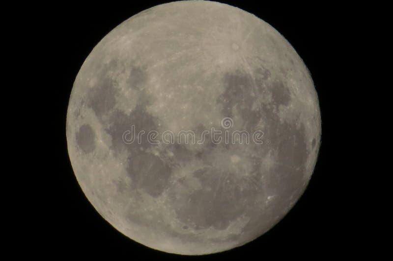 Το μεγάλο φεγγάρι με μερικούς κρατήρες στοκ εικόνες