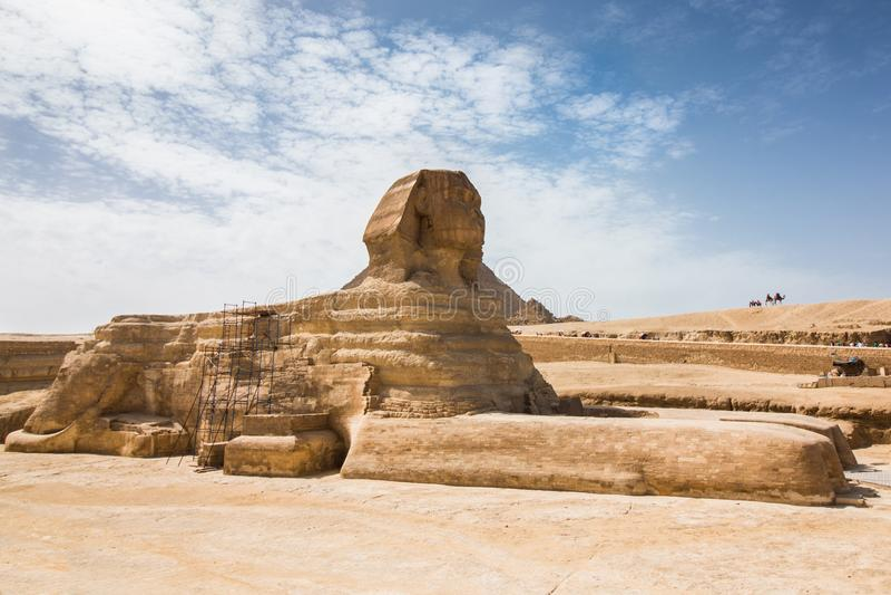 Το μεγάλο Sphinx Giza από την πλευρά στοκ εικόνες με δικαίωμα ελεύθερης χρήσης
