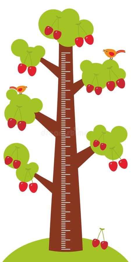Το μεγάλο δέντρο με τα πράσινα φύλλα και το ώριμο κόκκινο κεράσι στο άσπρο ύψος παιδιών υποβάθρου μετρούν την αυτοκόλλητη ετικέττ ελεύθερη απεικόνιση δικαιώματος