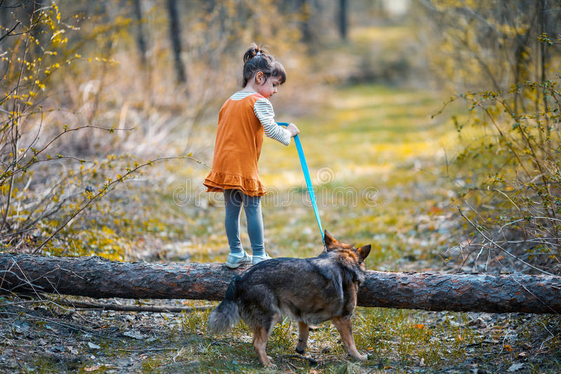 Το μικρό κορίτσι με ένα μεγάλο σκυλί αναρριχείται πέρα από ένα κούτσουρο στοκ φωτογραφία με δικαίωμα ελεύθερης χρήσης