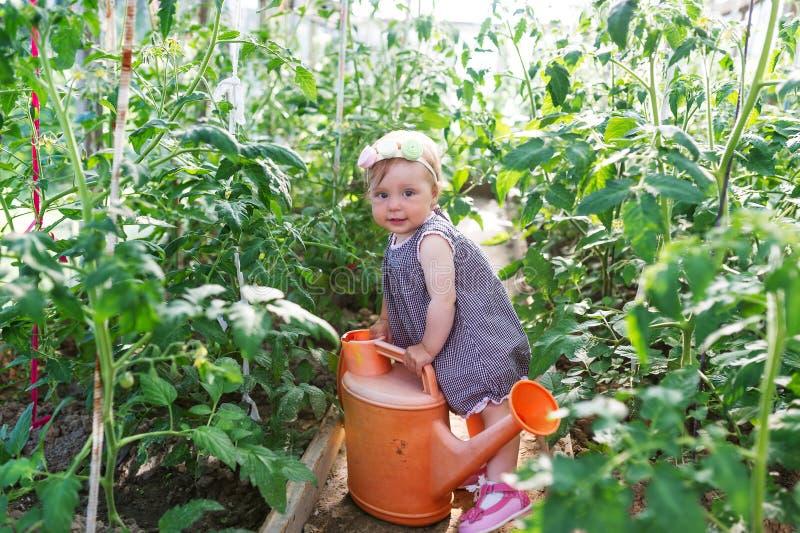 Το μικρό κορίτσι με το πότισμα μπορεί είναι μεταξύ των πράσινων εγκαταστάσεων σε έναν κήπο στοκ εικόνες με δικαίωμα ελεύθερης χρήσης