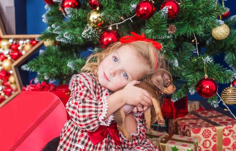 Το μικρό κορίτσι σε ένα όμορφο φόρεμα αγκαλιάζει ένα καλό κουτάβι ενός dachshund γυναίκα πορτρέτου προσώπου κινηματογραφήσεων σε  στοκ εικόνα