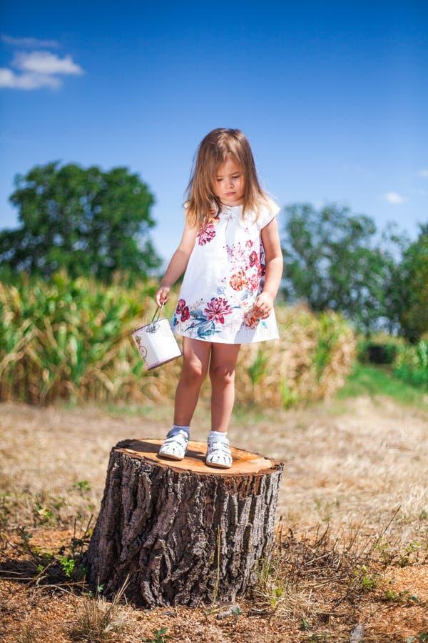 Το μικρό κορίτσι στέκεται σε ένα κολόβωμα σε έναν τομέα στοκ εικόνες με δικαίωμα ελεύθερης χρήσης