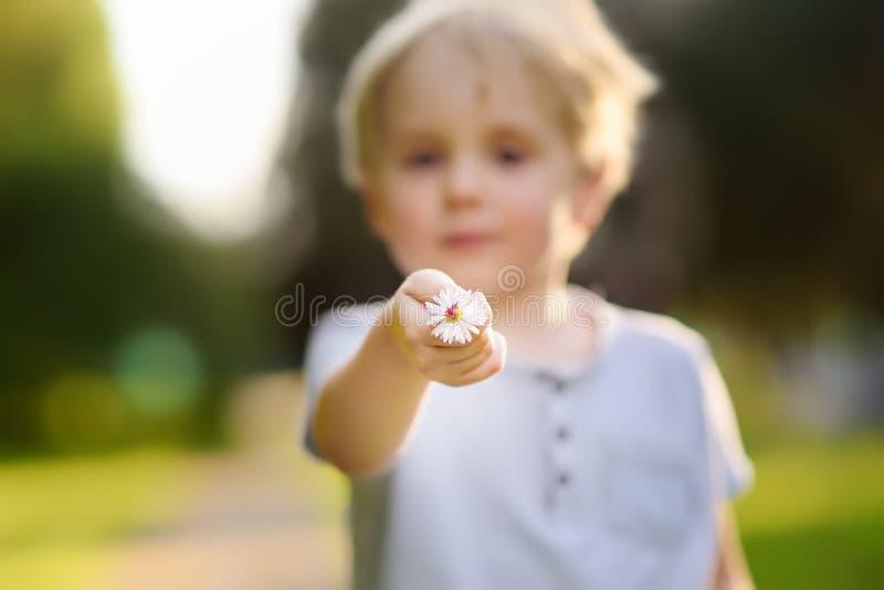 Το μικρό παιδί παρουσιάζει λουλούδι και υποβάλλει μια ερώτηση τι είναι στοκ εικόνες