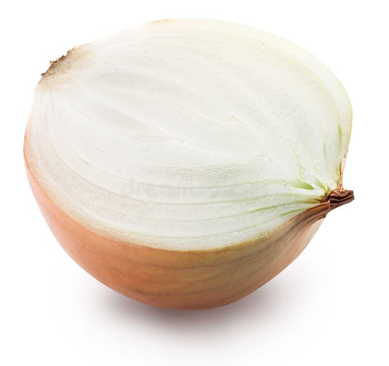 Το μισό από το κρεμμύδι βολβών στοκ εικόνα με δικαίωμα ελεύθερης χρήσης