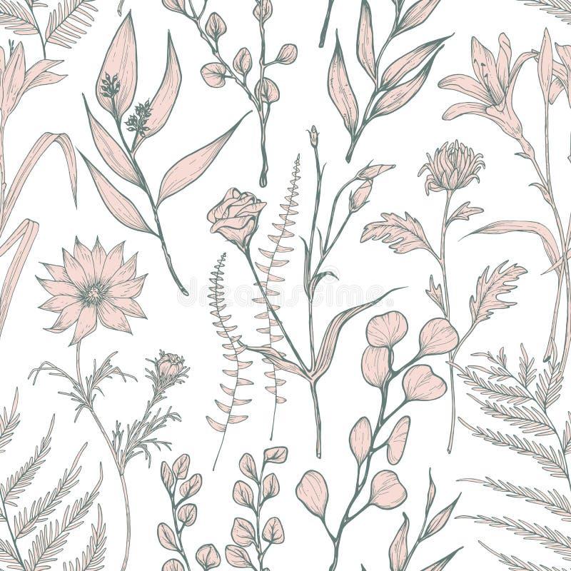 Το μονοχρωματικό άνευ ραφής σχέδιο με τα ανθίζοντας άγρια λουλούδια δίνει επισυμένος την προσοχή στο άσπρο υπόβαθρο Φυσικό σκηνικ απεικόνιση αποθεμάτων