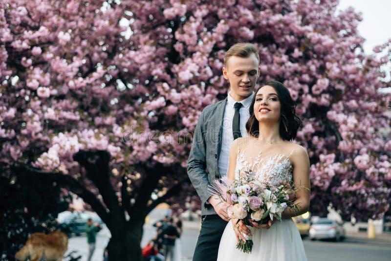Το μοντέρνο νέο ζεύγος στέκεται κοντά στο δέντρο sakura στοκ εικόνες