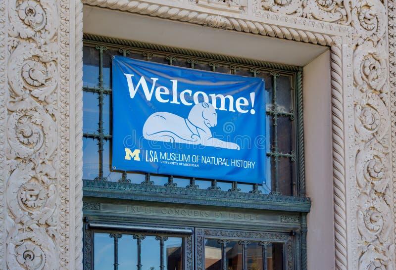 Το μουσείο Πανεπιστήμιο του Michigan της φυσικής ιστορίας στοκ εικόνες με δικαίωμα ελεύθερης χρήσης