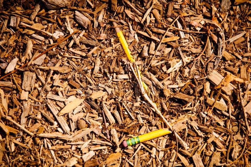 Το μολύβι πέθανε στοκ εικόνα