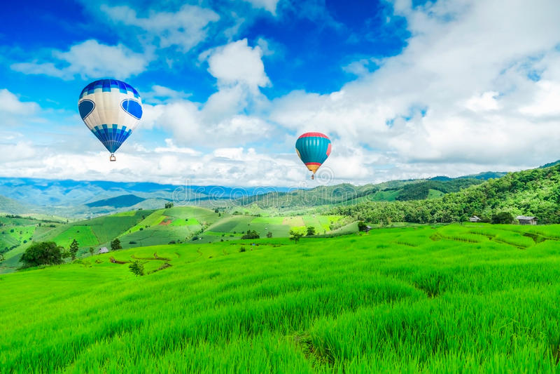 Το μπαλόνι που πετά στον τομέα ρυζιού, τον τομέα ρυζιού στο βουνό ή το πεζούλι ρυζιού στη φύση, χαλαρώνει την ημέρα στην όμορφη θ στοκ εικόνες