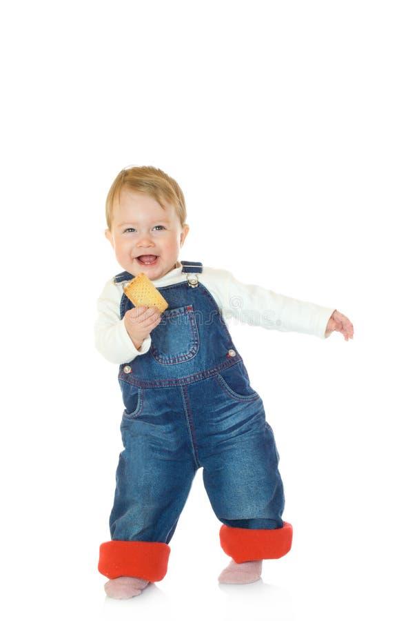το μπισκότο μωρών απομόνωσ&epsil στοκ εικόνα με δικαίωμα ελεύθερης χρήσης
