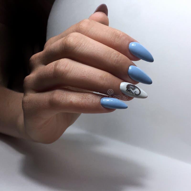 το μπλε θηλυκό μανικιούρ στα καρφιά κλείνει επάνω στοκ εικόνα με δικαίωμα ελεύθερης χρήσης
