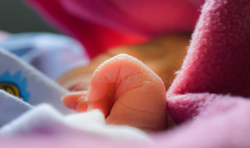 Το μωρό παρουσιάζει δάχτυλά του στοκ φωτογραφία