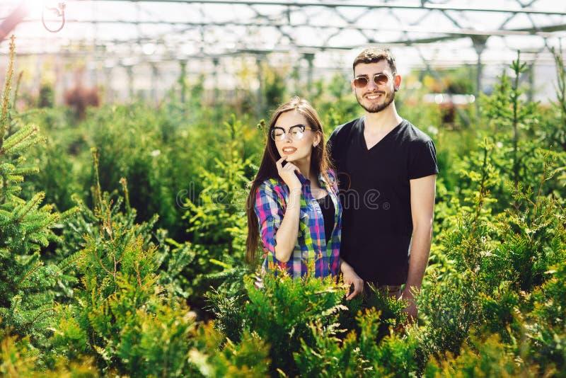 Το νέοι ζεύγος, ο άνδρας και η γυναίκα, που στέκονται μαζί στο κέντρο κήπων και επιλέγουν τις εγκαταστάσεις για το πρασίνισμα του στοκ εικόνες