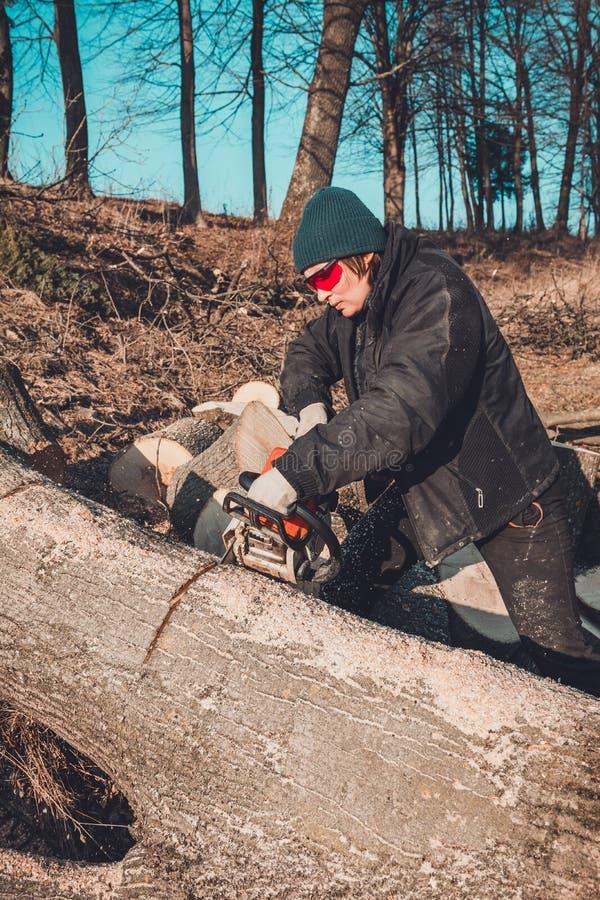 Το νέο αγροτικό κορίτσι έκοψε ένα αλυσιδοπρίονο δέντρων στα γάντια, μαγειρεύει το καυσόξυλο για το χειμώνα στοκ εικόνες