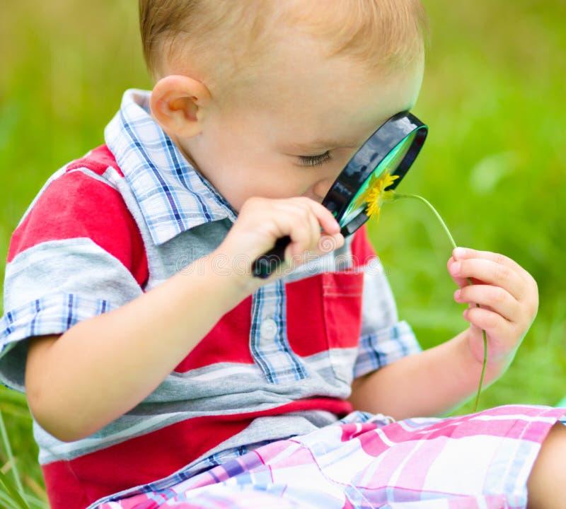 Το νέο αγόρι εξετάζει το λουλούδι μέσω πιό magnifier στοκ εικόνες με δικαίωμα ελεύθερης χρήσης