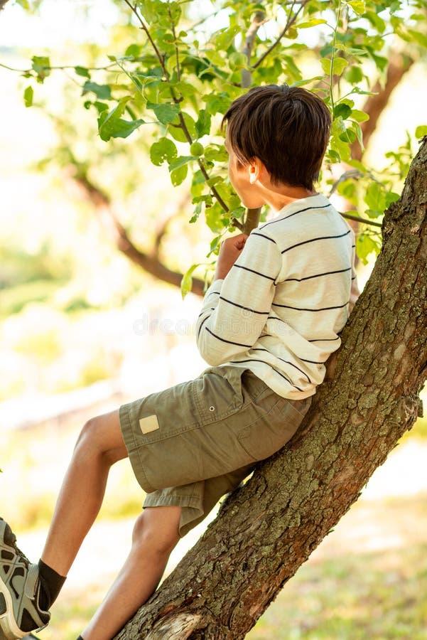 Το νέο αγόρι κάθεται σε ένα δέντρο στον κήπο Εξετάζει την απόσταση και σκέφτεται για κάτι στοκ εικόνες