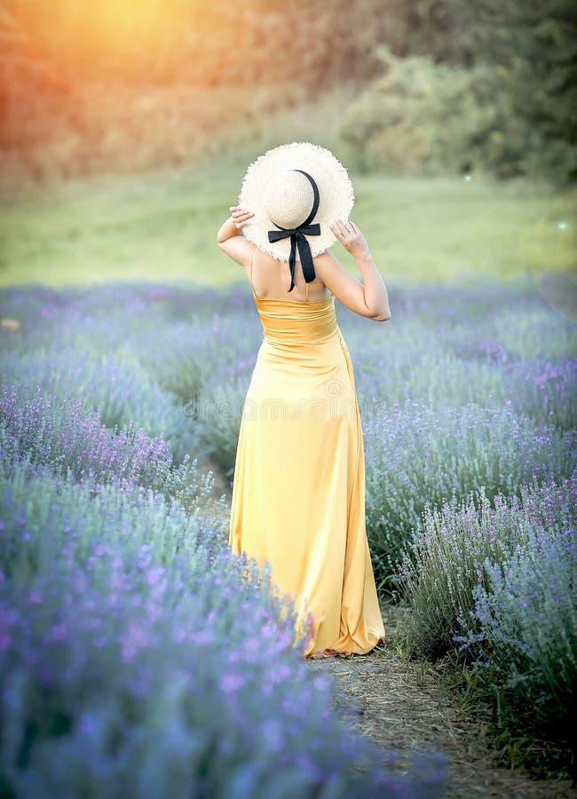 Το νέο κορίτσι που περιμένει ένα μωρό περπατά lavender στοκ εικόνα με δικαίωμα ελεύθερης χρήσης