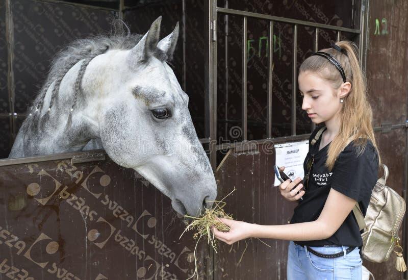 Το νέο κορίτσι ταΐζει ένα άλογο σε έναν στάβλο Έκθεση ΑΓΡΟ το 2019 στοκ εικόνες με δικαίωμα ελεύθερης χρήσης
