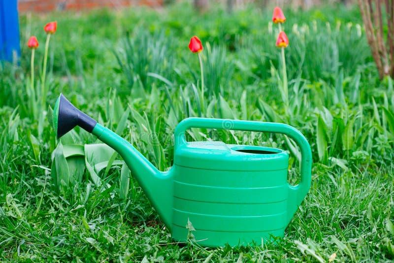Το νέο πράσινο πότισμα μπορεί στεμένος στη χλόη στοκ φωτογραφίες με δικαίωμα ελεύθερης χρήσης