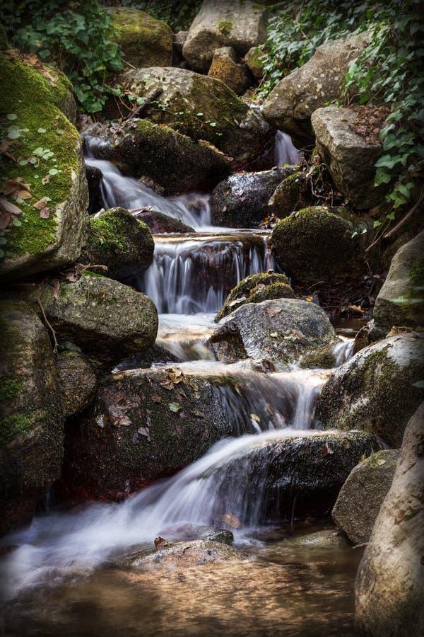 Το νερό από την πηγή ρέει ομαλά πέρα από τους βράχους στοκ εικόνα με δικαίωμα ελεύθερης χρήσης