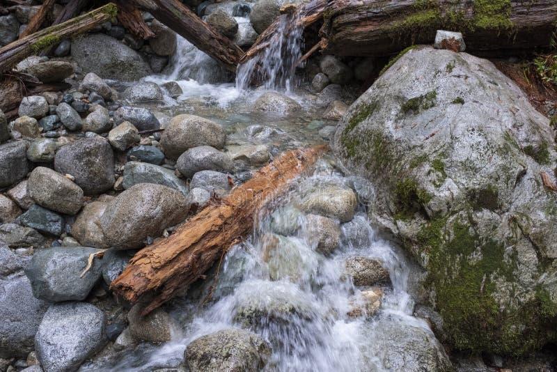 Το νερό που ορμά πέρα από τους βράχους και συνδέεται ένα ρεύμα βουνών στοκ εικόνες