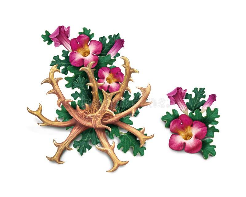 Το νύχι Harpagophytum διαβόλων ` s procumbens, ή επιτίθεται τις εγκαταστάσεις, ξύλο απεικόνιση αποθεμάτων
