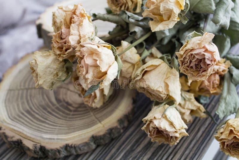 Το ξύλο περικοπών με τα ξηρά τριαντάφυλλα  ξηρά τριαντάφυλλα σε ένα δέντρο περικοπών στοκ εικόνες