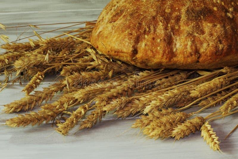 Το ορεκτικό φρέσκο κατακόκκινο ψωμί σίκαλης έκανε από το αλεύρι σίκαλης και τα ώριμα αυτιά του σίτου στο ελαφρύ φυσικό ξύλινο υπό στοκ φωτογραφίες