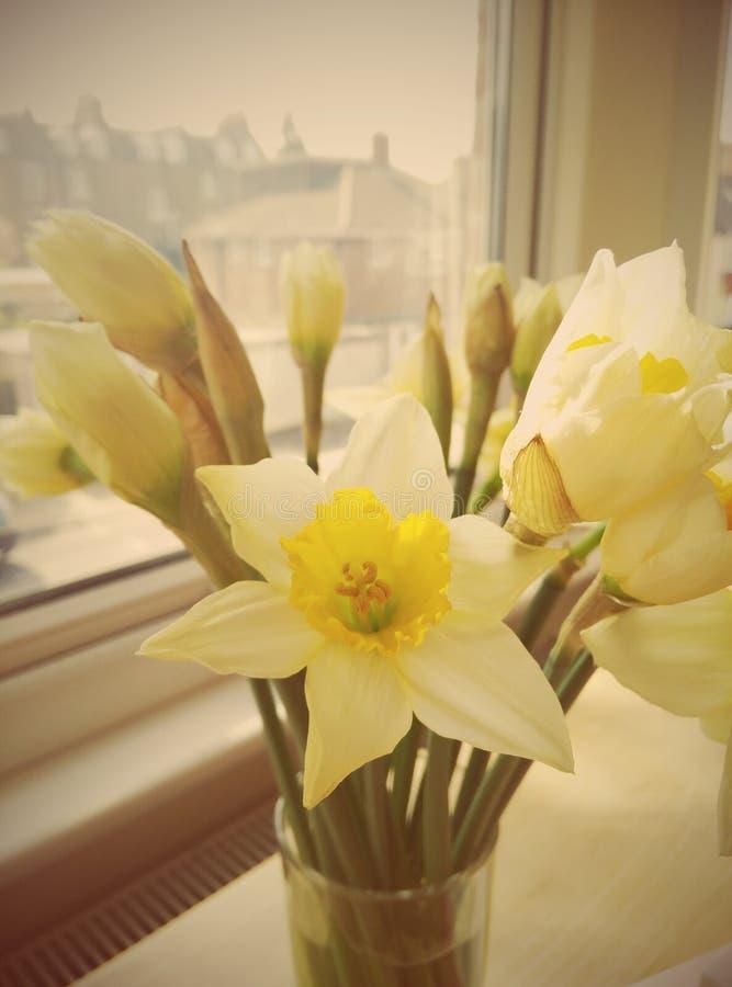 το λουλούδι ανασκόπησης ανθίζει τον τρύγο στοκ εικόνες