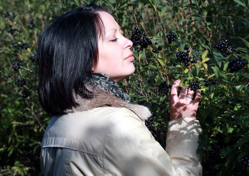 το πάρκο σταφίδων μούρων μυ στοκ φωτογραφίες με δικαίωμα ελεύθερης χρήσης