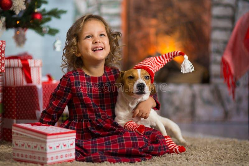 Το παιδί κοριτσιών γιορτάζει τα Χριστούγεννα με το τεριέ του Jack Russell σκυλιών στοκ φωτογραφίες