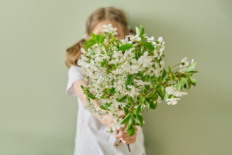 Το παιδί κοριτσιών δίνει στην άνοιξη τους άσπρους κλάδους κερασιών λουλουδιών ανθίζοντας, πράσινο υπόβαθρο τοίχων στοκ εικόνες με δικαίωμα ελεύθερης χρήσης