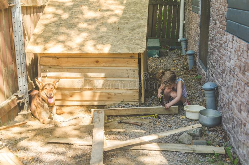 Το παιδί χτίζει το θάλαμο για τα σκυλιά στοκ φωτογραφία με δικαίωμα ελεύθερης χρήσης