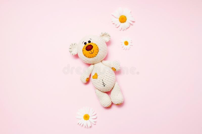 Το παιχνίδι teddy αφορά με τις μαργαρίτες που απομονώνονται ένα ρόδινο υπόβαθρο Υπόβαθρο μωρών Διαστημική, τοπ άποψη αντιγράφων στοκ εικόνα με δικαίωμα ελεύθερης χρήσης