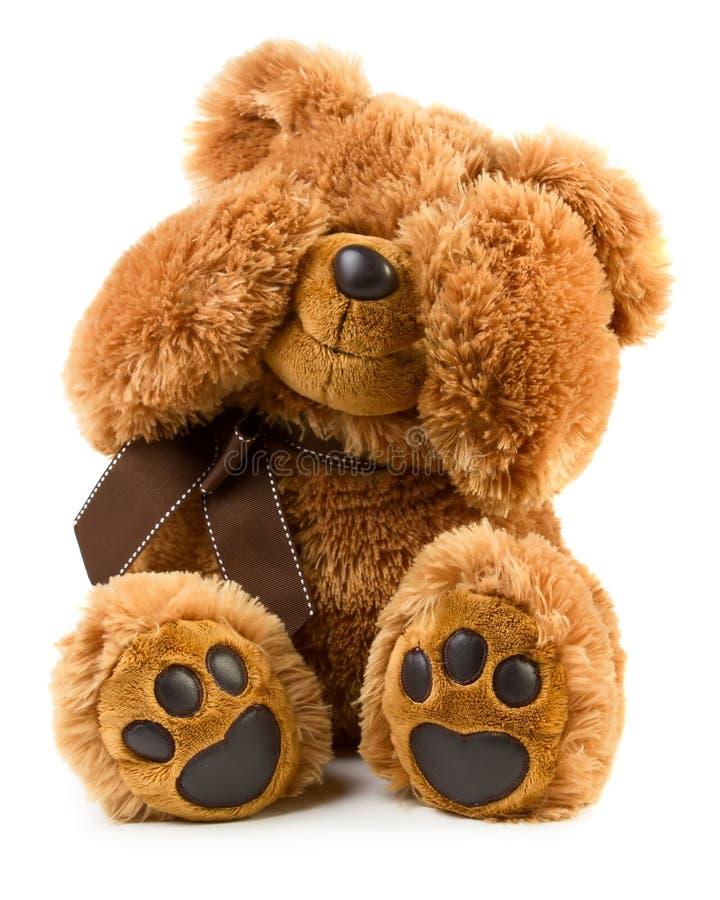 Το παιχνίδι teddy αντέχει στοκ εικόνα