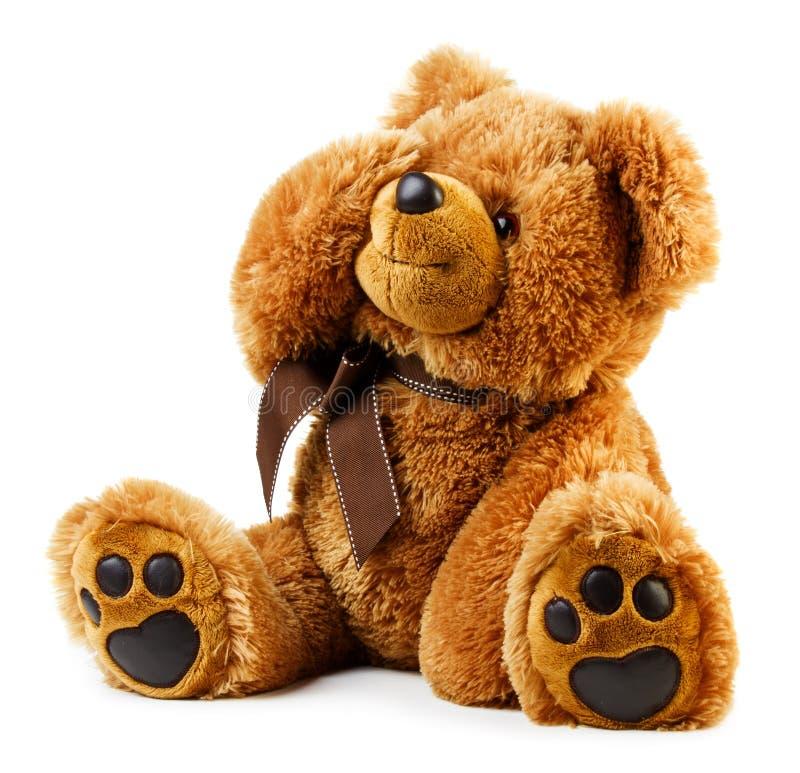 Το παιχνίδι teddy αντέχει στοκ φωτογραφία με δικαίωμα ελεύθερης χρήσης