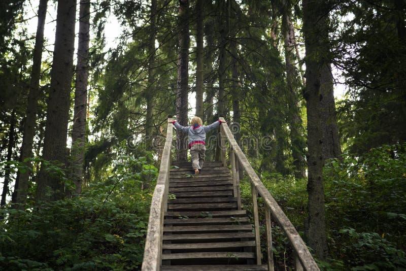 Το παιδί αναρριχείται σε μια παλαιά ξύλινη σκάλα στοκ φωτογραφίες